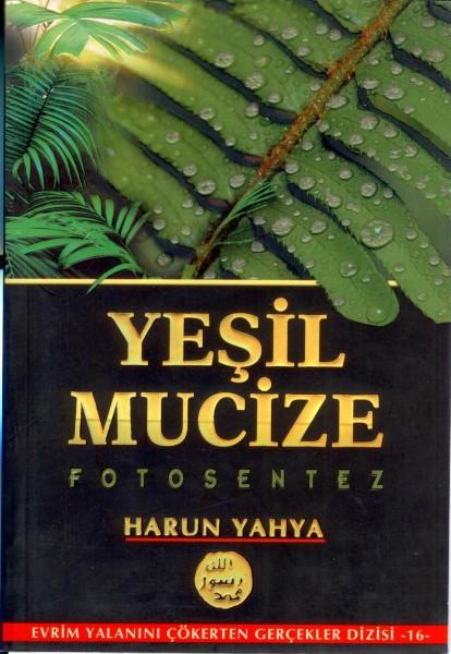 Yesil Mucize Fotosentez